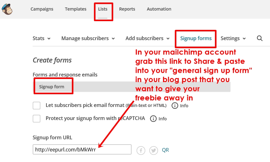 subscribe link from mailchimp