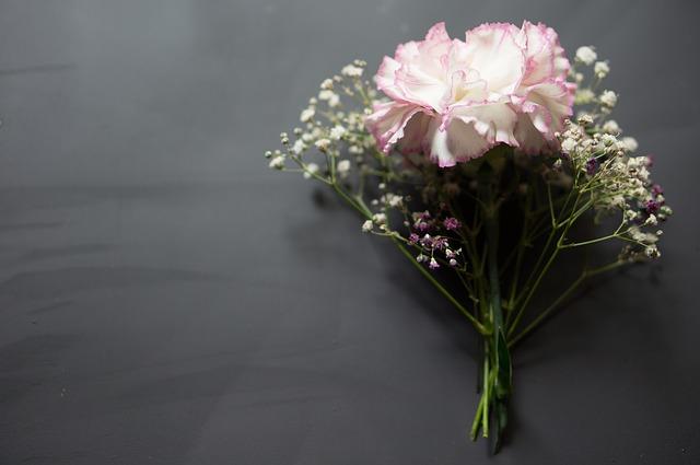 flowers-1216049_640