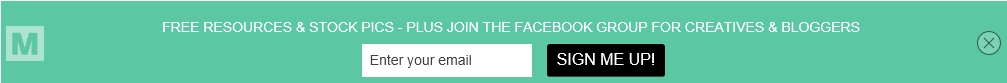 sign up top bar form mailmunch