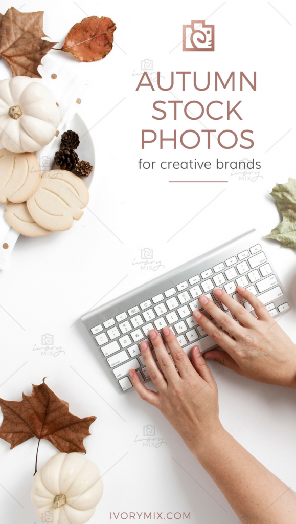 Autumn Thanksgiving Fall flatlay flat lay stock photos for mockups and creative brands