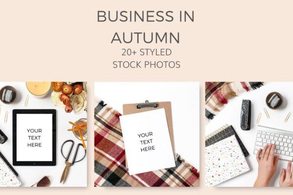 Business stock photos autumn fall yellow mustard styled