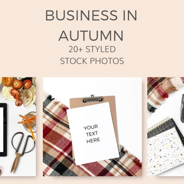 Business stock photos autumn fall yellow mustard styled