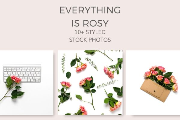 rose_flat_lay_stock_photos