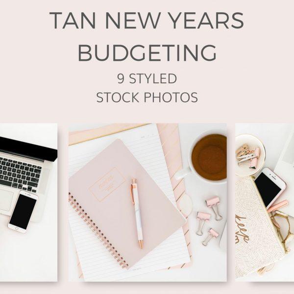 tan new years budget stock photos sample